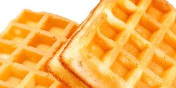 Hinds-Bock-Waffle-Batter-Depositor